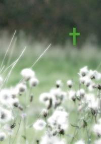 Raamattu (Vihreät niityt